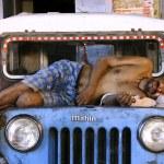 Man dead asleep on jeep, delhi, india — Stock Photo
