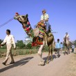 Tourists taking a camel ride, pushkar, india — Stock Photo