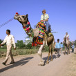 Tourists taking a camel ride, pushkar, india — Stock Photo #8046538