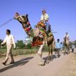 Tourists taking a camel ride, pushkar, india — Stock Photo