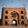 JamMasjid entrance, Delhi, India — Stock Photo #8046593