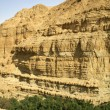 Desert landscape in the dead sea region — Foto Stock
