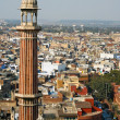 Stock Photo: Minaret in Delhi