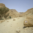 Desert landscape in the dead sea region — Stock Photo #8048015