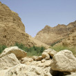 Desert landscape in the dead sea region — Stock Photo #8048016