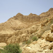 Desert landscape in the dead sea region — Stock Photo #8048018