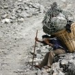 Stock Photo: Mcarrying heavy load, annapurna, nepal