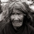 Reading the lines of this 80 year old Gurung woman, — Stock Photo