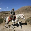 Horse back rider on path, annapurna, nepal — Stock Photo