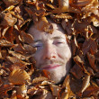 Bed of leaves — Stock Photo