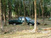 Coche envuelto alrededor del árbol después del tsunami, khao lak, tailandia — Foto de Stock