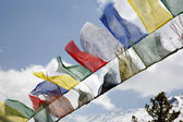 Buddhist praying flags, annapurna, nepal — Stock Photo