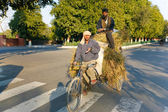 Two men transporting grass using a rickshaw bicycle — Stock Photo