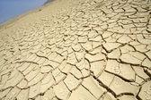 Dry desert in red sea region, sinai, egypt — Stock Photo