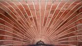 Ceiling pattern at Jama Masjid, Delhi, India — Stock Photo