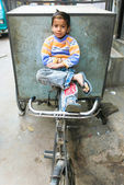 Small boy on bicycle trailer — Stock Photo