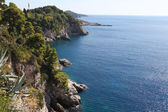 Dubrovnik coastline — Stock Photo