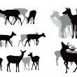 Deer herds collection — Stock Vector