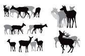 Deer herds collection — Stock Vector