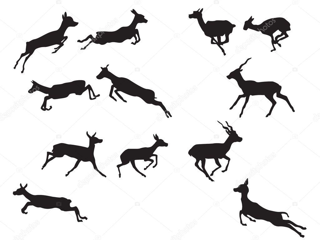 Gazelle Silhouette