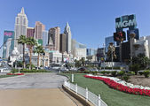 A View of Flowers, New York - New York, and the MGM Grand — Stock Photo
