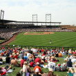 Arizona Diamondbacks Salt River Fields Spring Training Facility - Stock Photo