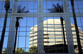 An Office Building Reflects a Building and Palms — Stock Photo