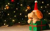A Stuffed Christmas Puppy — Stock Photo
