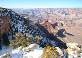 A Grand Canyon South Rim Winter View — Stock Photo