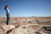 A Woman Gazes at Petrified Forest in Arizona — Stock Photo