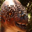 Stock Photo: Pachycephalosaurus Grazes in Cretaceous Forest
