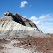 Stock Photo: Deposit of Petrified Wood at Base of Painted Bluff