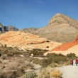 A Red Rock Canyon National Conservation Area Scene — Stock Photo