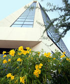 A Modern Office Building with Yellow Flowers — Стоковое фото