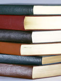 A Set of Six Leather Bound Books — Stock Photo
