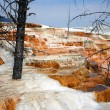 Hot Spring Terraces - Stock Photo