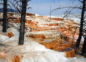 Hot Spring Terraces — Stock Photo
