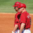 ArizonDiamondback First Base Coach Matt Williams and Adam LaRoche — Stock Photo #8565624