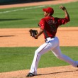 Постер, плакат: Esmerling Vasquez pitches in an Arizona Diamondbacks game