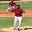 Постер, плакат: Arizona Diamondbacks Leo Rosales Pitches in Spring Training