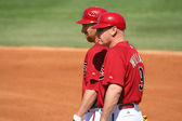 Arizona Diamondback First Base Coach Matt Williams and Adam LaRoche — Stock Photo