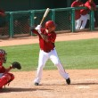 Постер, плакат: Ryan Roberts bats in an Arizona Diamondbacks game
