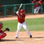 ������, ������: Ryan Roberts bats in an Arizona Diamondbacks game