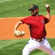 Arizona Diamondbacks Left Handed Pitcher Doug Davis - Stock Photo