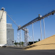 Grain co-op in Pacific Northwest. — Stock Photo #8007897