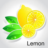 Vector lemon — Stock Vector