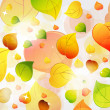 Autumn background with leaves — Stock Vector #8164610