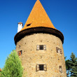 Royalty-Free Stock Photo: Medieval Tower in Cesky Krumlov