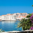 A panoramic view of an old city of Dubrovnik - Foto Stock