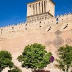 Windcatcher on Karmin Khan citadel , Shiraz — Stock Photo #9178258
